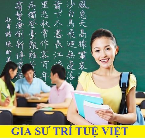 Trung tâm gia sư Trí Tuệ Việt.