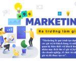 Học marketing
